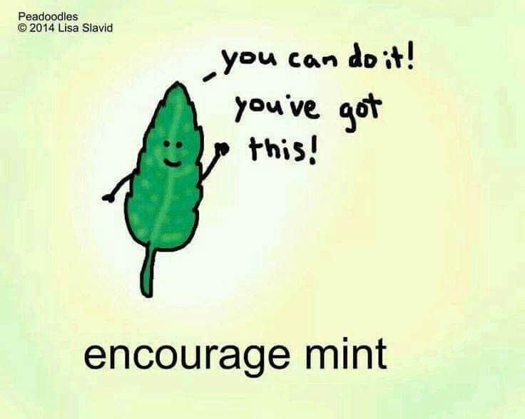 Fraser People Encourage Mint